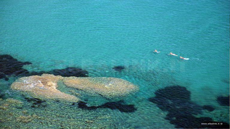 Mare all'Isola d'Elba