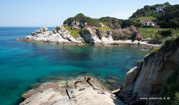 Spiaggia del Cotoncello - Isola d'Elba